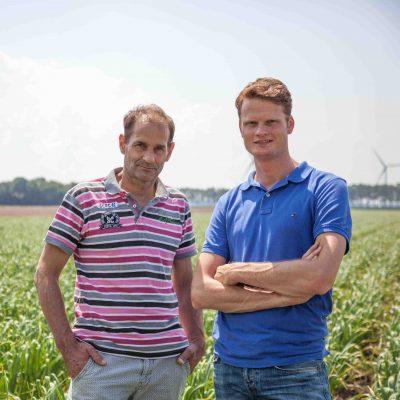banner knoflook trugarlic biologisch flevoland nederland Bas Groeneveld Sjaak Twisk knoflookteelt